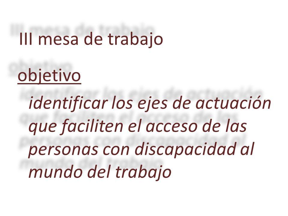 objetivo identificar los ejes de actuación que faciliten el acceso de las personas con discapacidad al mundo del trabajo III mesa de trabajo