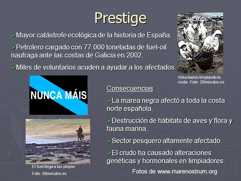 Desastre de Doñana Rotura de una presa de contención en las minas de Aznalcóllar (Sevilla), resultando en un importante vertido de agua ácida y de lodos muy tóxicos Las aguas invadieron la región externa del Parque Nacional y desembocaron en el Guadalquivir Consecuencias: 30 toneladas de animales muertos 30 toneladas de animales muertos 4.600 hectáreas de nueve municipios envenenadas 4.600 hectáreas de nueve municipios envenenadas Acuíferos altamente contaminados Acuíferos altamente contaminados Sector agrícola de la zona altamente afectado Sector agrícola de la zona altamente afectado Desastre de Aznalcóllar, 25/04/1998 Foto: Universidad de Granada, departamento de edafología