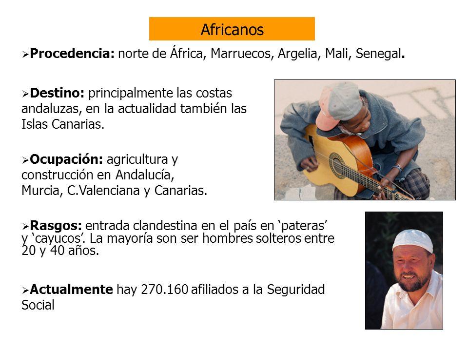Latinoamericanos Ecuador Rasgos: mayoría de mujeres.