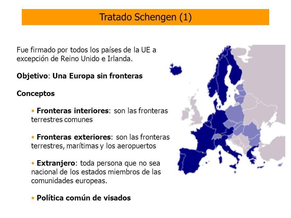ONGs Intérpretes Cursos de español Formación de mediadores interculturales Asesoramiento Asistencia jurídica Fuentes de información sobre la inmigración Actividades para la integración En España las ONGs se ocupan de muchas de las necesidades de los inmigrantes.