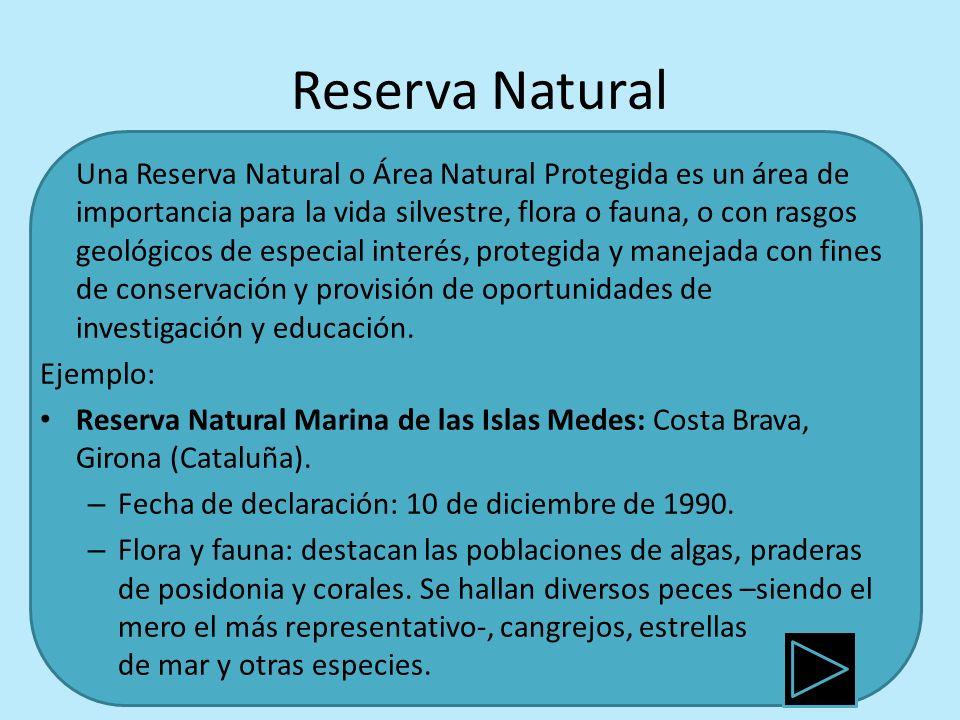 Reserva Natural Una Reserva Natural o Área Natural Protegida es un área de importancia para la vida silvestre, flora o fauna, o con rasgos geológicos