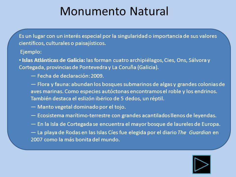 Monumento Natural Es un lugar con un interés especial por la singularidad o importancia de sus valores científicos, culturales o paisajísticos. Ejempl