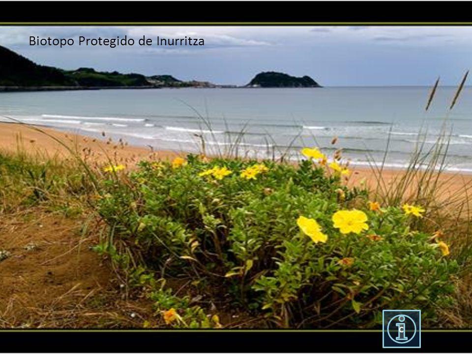 Biotopo Protegido de Inurritza c