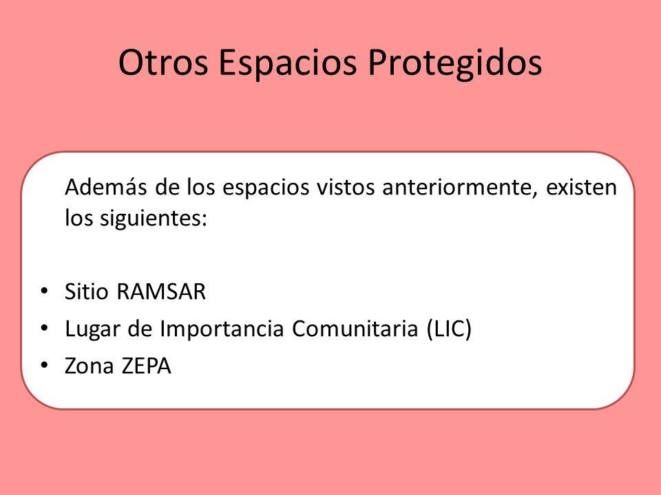 Otros Espacios Protegidos Además de los espacios vistos anteriormente, existen los siguientes: Sitio RAMSAR Lugar de Importancia Comunitaria (LIC) Zon