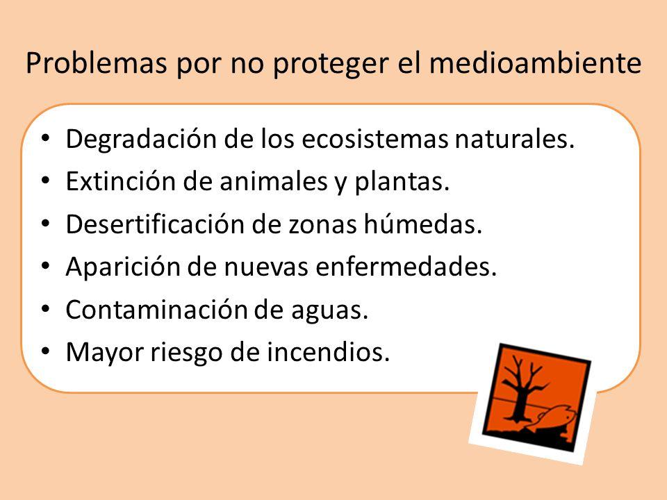 Problemas por no proteger el medioambiente Degradación de los ecosistemas naturales. Extinción de animales y plantas. Desertificación de zonas húmedas