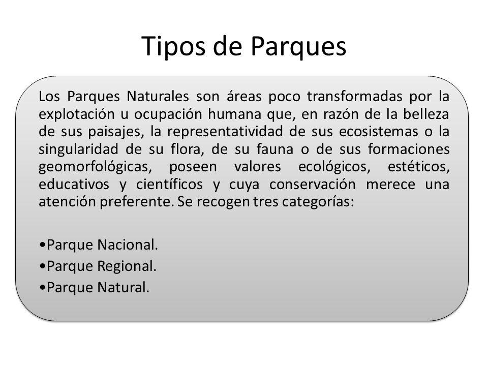 Tipos de Parques Los Parques Naturales son áreas poco transformadas por la explotación u ocupación humana que, en razón de la belleza de sus paisajes,