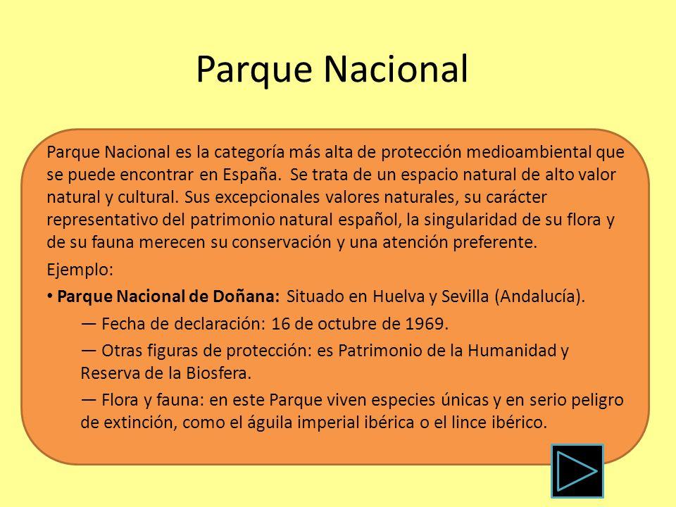Parque Nacional Parque Nacional es la categoría más alta de protección medioambiental que se puede encontrar en España. Se trata de un espacio natural