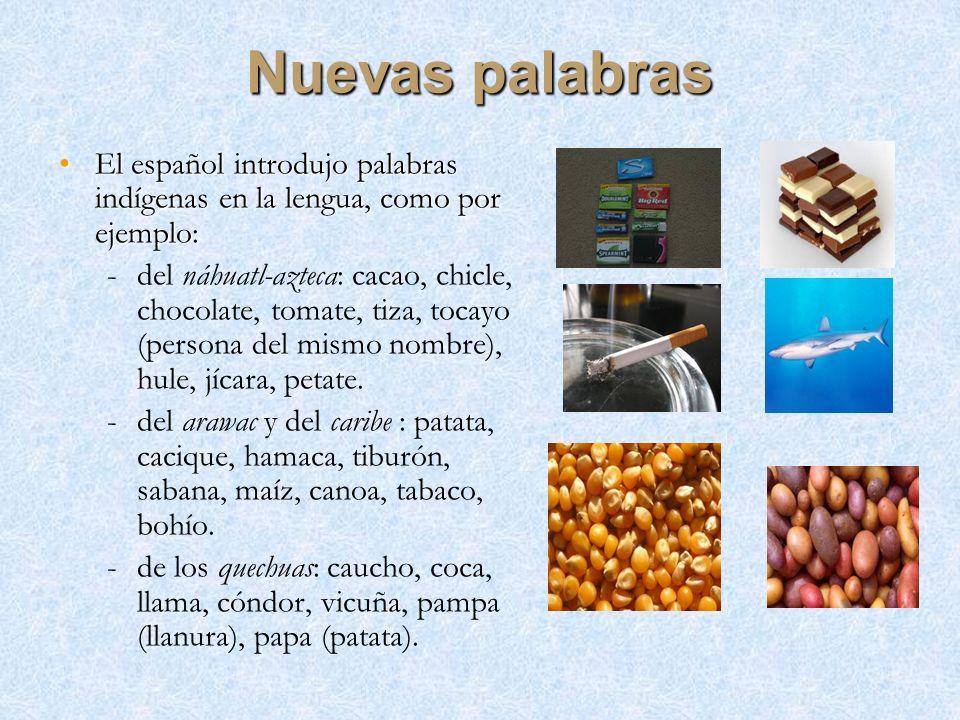 Nuevas palabras El español introdujo palabras indígenas en la lengua, como por ejemplo:El español introdujo palabras indígenas en la lengua, como por