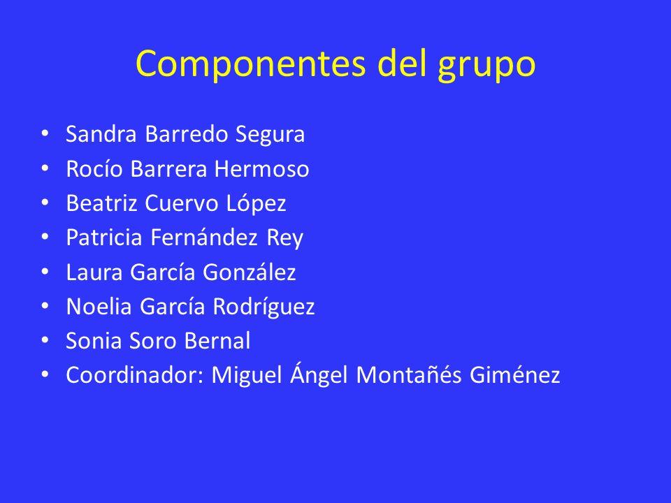 Componentes del grupo Sandra Barredo Segura Rocío Barrera Hermoso Beatriz Cuervo López Patricia Fernández Rey Laura García González Noelia García Rodr
