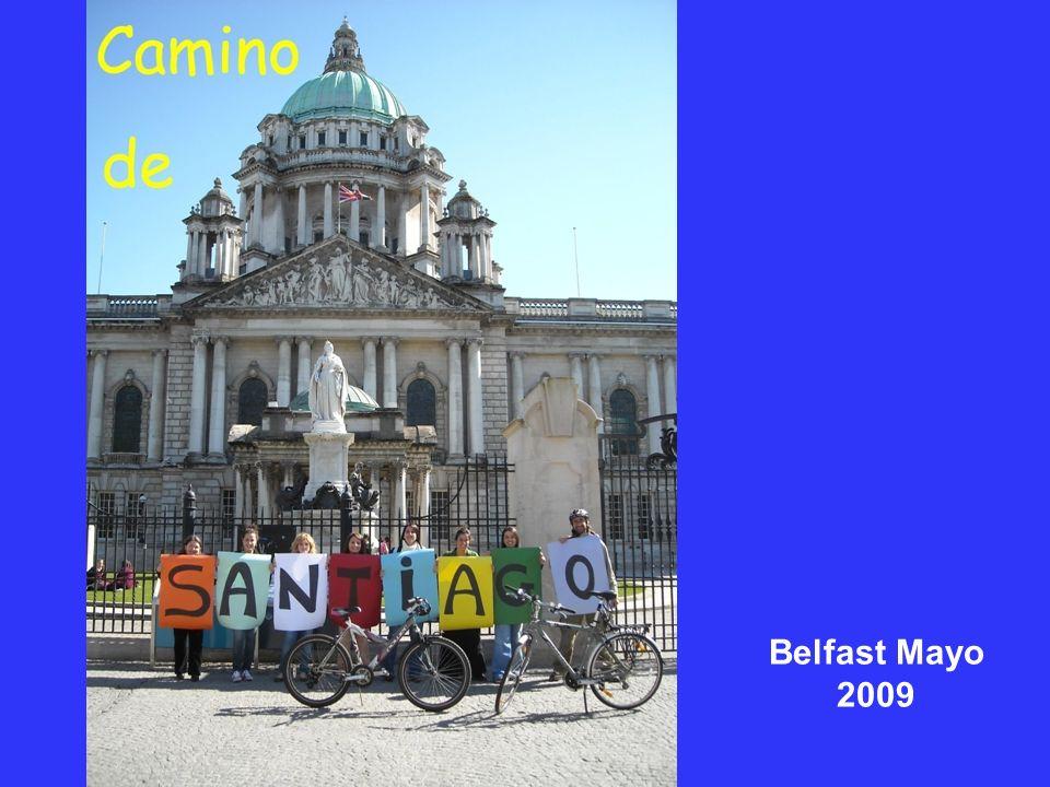 Belfast Mayo 2009