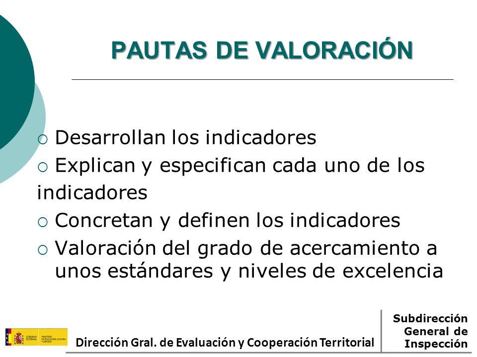 PAUTAS DE VALORACIÓN Desarrollan los indicadores Explican y especifican cada uno de los indicadores Concretan y definen los indicadores Valoración del grado de acercamiento a unos estándares y niveles de excelencia Dirección Gral.