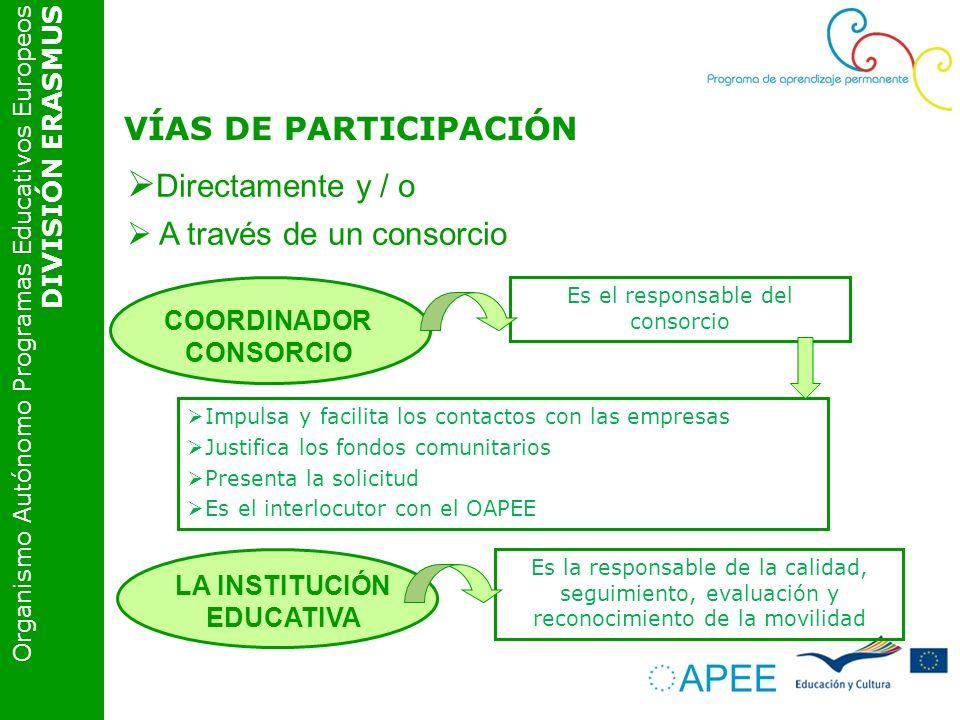 Organismo Autónomo Programas Educativos Europeos DIVISIÓN ERASMUS VÍAS DE PARTICIPACIÓN Directamente y / o A través de un consorcio Es el responsable del consorcio COORDINADOR CONSORCIO Impulsa y facilita los contactos con las empresas Justifica los fondos comunitarios Presenta la solicitud Es el interlocutor con el OAPEE Es la responsable de la calidad, seguimiento, evaluación y reconocimiento de la movilidad LA INSTITUCIÓN EDUCATIVA