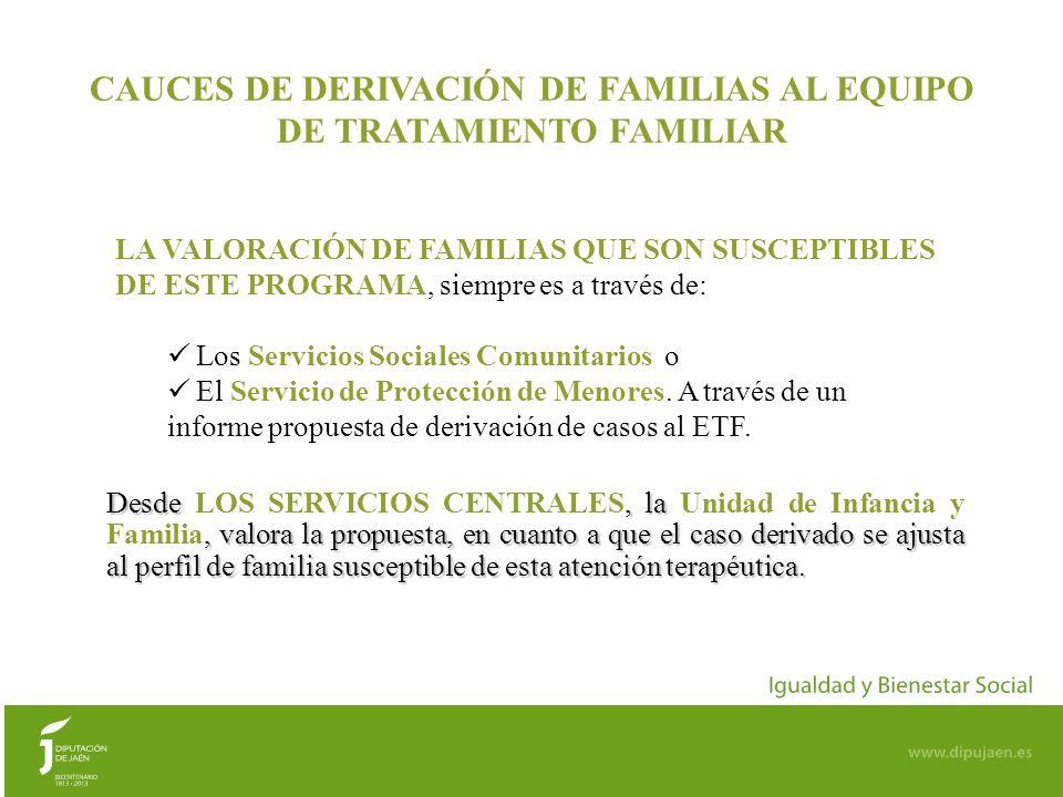 9 ETFs DE DIPUTACIÓN DE JAÉN EVOLUCIÓN PROGRAMA DE TRATAMIENTO FAMILIAR