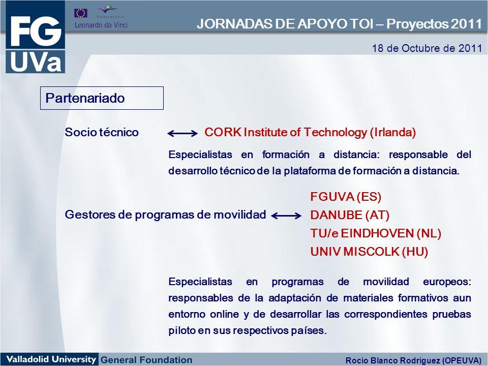 Especialistas en formación a distancia: responsable del desarrollo técnico de la plataforma de formación a distancia. Partenariado Socio técnicoCORK I