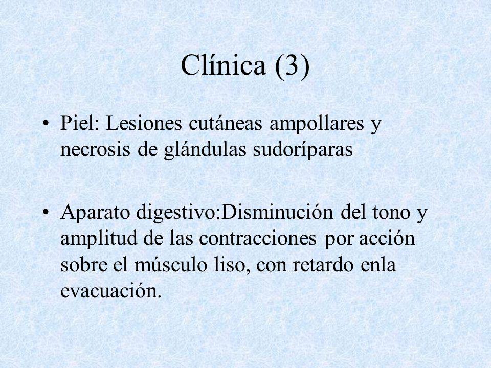 Clínica (2) Cardiovascular: Depresión centro vasomotor bulbar, disminución frecuencia y contractilidad cardíaca por acción sobre ganglio simpático.Vas