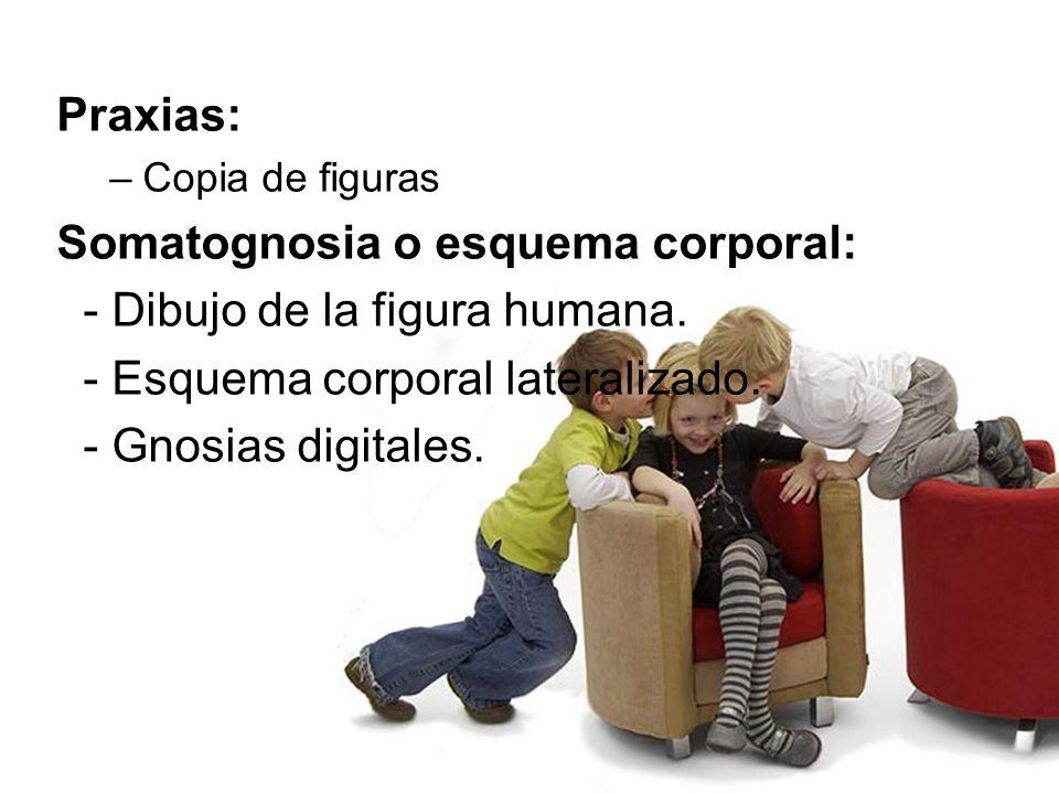 Praxias: –Copia de figuras Somatognosia o esquema corporal: - Dibujo de la figura humana. - Esquema corporal lateralizado. - Gnosias digitales.