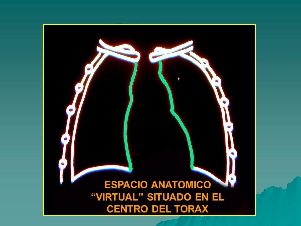 MEDIASTINO ESPACIO ANATOMICO VIRTUAL SITUADO EN EL CENTRO DEL TORAX