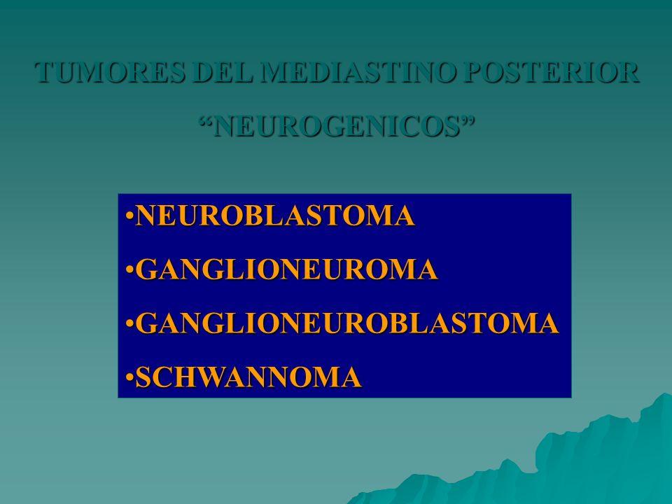 TUMORES DEL MEDIASTINO POSTERIOR NEUROGENICOS NEUROBLASTOMANEUROBLASTOMA GANGLIONEUROMAGANGLIONEUROMA GANGLIONEUROBLASTOMAGANGLIONEUROBLASTOMA SCHWANN