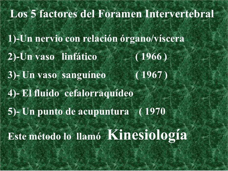 Los 5 factores del Foramen Intervertebral 1)-Un nervio con relación órgano/víscera 2)-Un vaso linfático ( 1966 ) 3)- Un vaso sanguíneo ( 1967 ) 4)- El