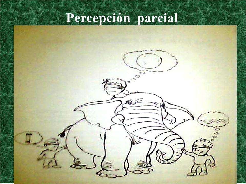 Percepción parcial