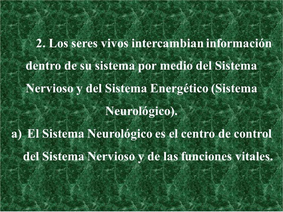 2. Los seres vivos intercambian información dentro de su sistema por medio del Sistema Nervioso y del Sistema Energético (Sistema Neurológico). a)El S