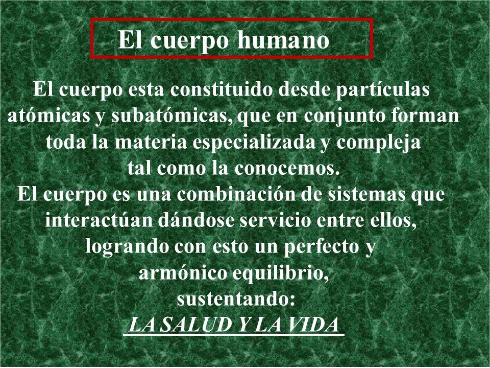 El cuerpo humano El cuerpo esta constituido desde partículas atómicas y subatómicas, que en conjunto forman toda la materia especializada y compleja t