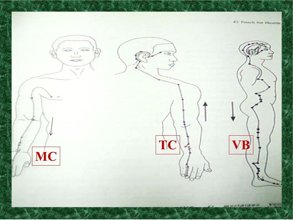 MC TCVB