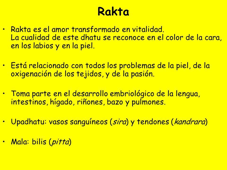 Rakta Rakta es el amor transformado en vitalidad. La cualidad de este dhatu se reconoce en el color de la cara, en los labios y en la piel. Está relac