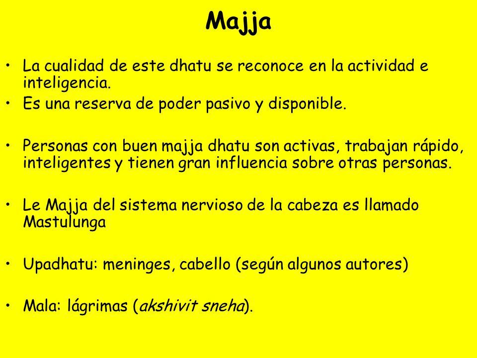Majja La cualidad de este dhatu se reconoce en la actividad e inteligencia. Es una reserva de poder pasivo y disponible. Personas con buen majja dhatu