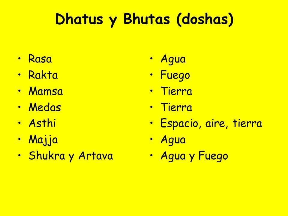 Dhatus y Bhutas (doshas) Rasa Rakta Mamsa Medas Asthi Majja Shukra y Artava Agua Fuego Tierra Espacio, aire, tierra Agua Agua y Fuego