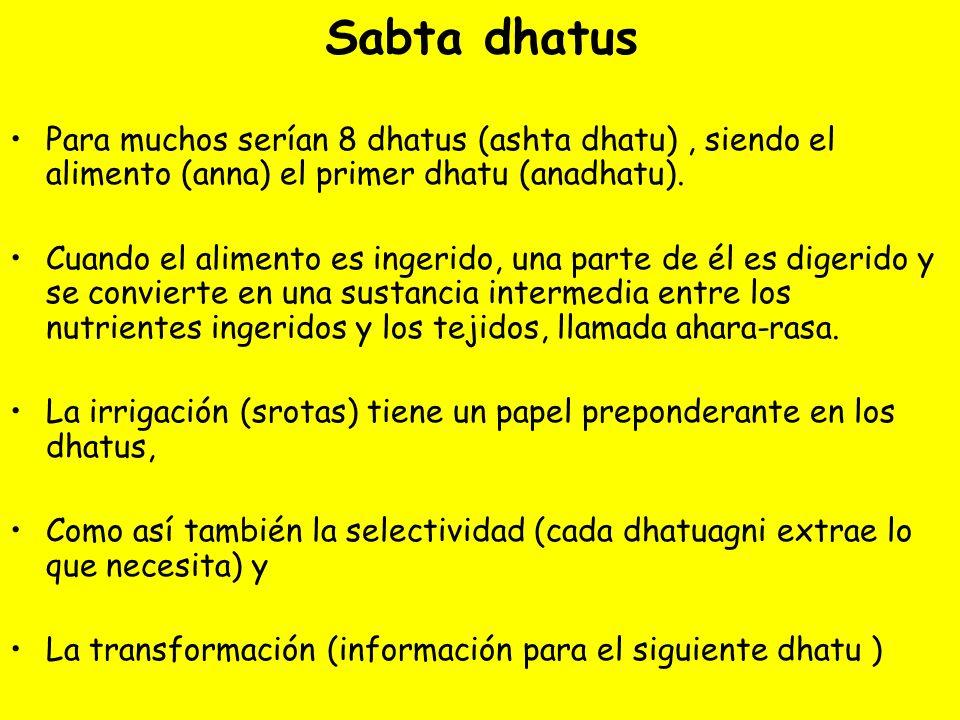 Sabta dhatus Para muchos serían 8 dhatus (ashta dhatu), siendo el alimento (anna) el primer dhatu (anadhatu). Cuando el alimento es ingerido, una part