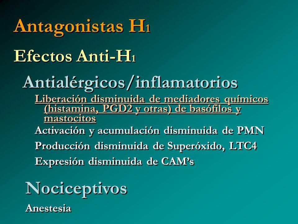 Antagonistas H 1 Efectos Anti-H 1 Antialérgicos/inflamatorios Efectos Anti-H 1 Antialérgicos/inflamatorios Liberación disminuida de mediadores químico