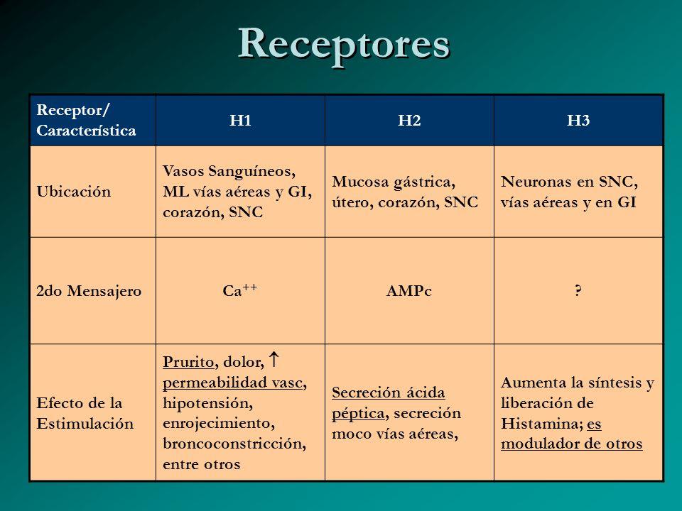 Receptores Receptor/ Característica H1H2H3 Ubicación Vasos Sanguíneos, ML vías aéreas y GI, corazón, SNC Mucosa gástrica, útero, corazón, SNC Neuronas