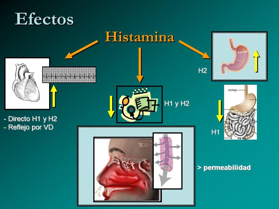 Histamina Efectos - Directo H1 y H2 - Reflejo por VD H1 y H2 > permeabilidad H2 H1