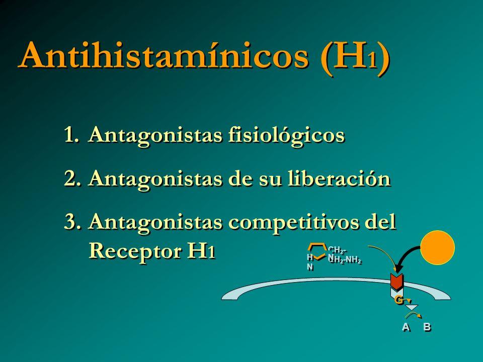 Antihistamínicos (H 1 ) 1. Antagonistas fisiológicos 2. Antagonistas de su liberación 3. Antagonistas competitivos del Receptor H 1 1. Antagonistas fi