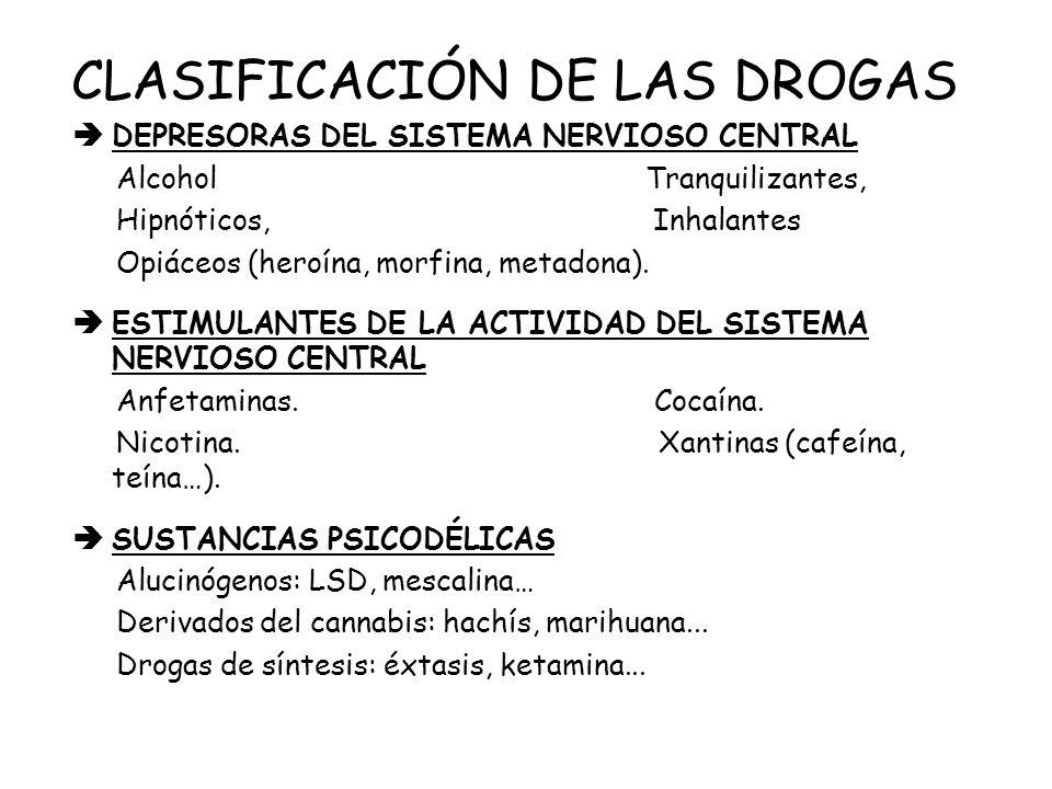 Si una persona toma drogas, éstas son transportadas al cerebro a través de la sangre.