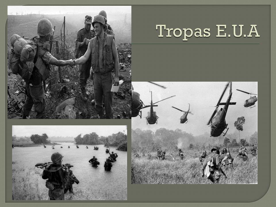 Operación Rolling Thunder: que comenzó a principios de marzo de 1964 para atacar objetivos en Vietnam del Norte y reducir o eliminar la incursiones de sus unidades en el Sur.