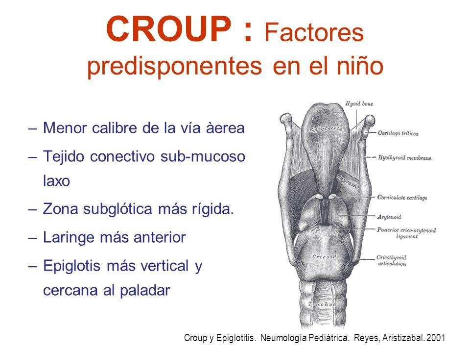 CROUP : Factores predisponentes en el niño –Menor calibre de la vía àerea –Tejido conectivo sub-mucoso laxo –Zona subglótica más rígida. –Laringe más