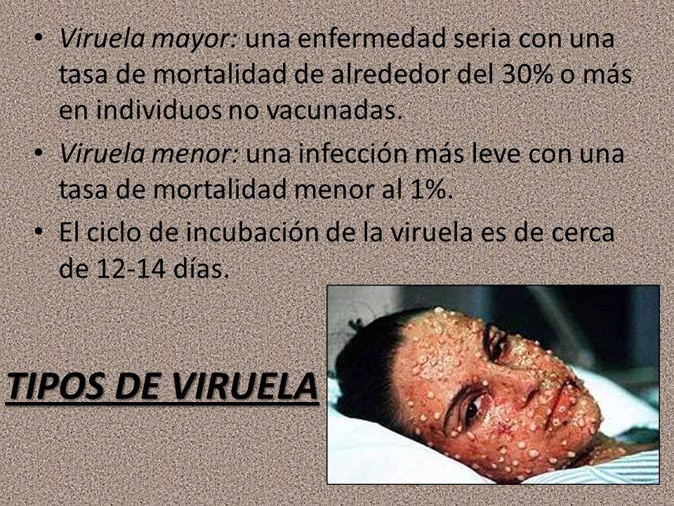 TIPOS DE VIRUELA Viruela mayor: una enfermedad seria con una tasa de mortalidad de alrededor del 30% o más en individuos no vacunadas. Viruela menor: