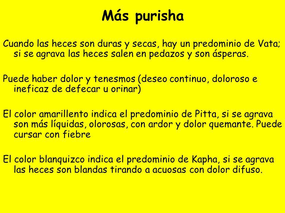Más purisha Cuando las heces son duras y secas, hay un predominio de Vata; si se agrava las heces salen en pedazos y son ásperas. Puede haber dolor y
