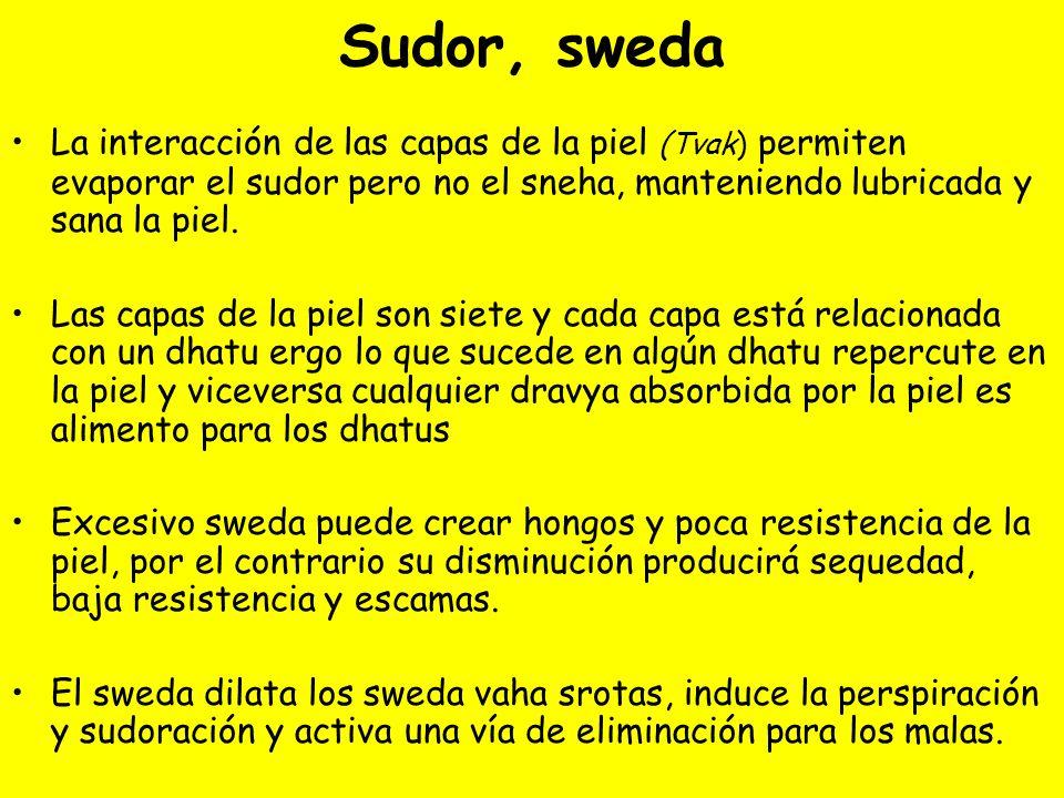 Sudor, sweda La interacción de las capas de la piel (Tvak) permiten evaporar el sudor pero no el sneha, manteniendo lubricada y sana la piel. Las capa