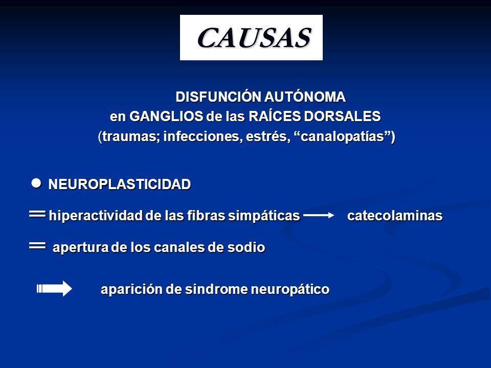 DISFUNCIÓN AUTÓNOMA DISFUNCIÓN AUTÓNOMA en GANGLIOS de las RAÍCES DORSALES (traumas; infecciones, estrés, canalopatías) (traumas; infecciones, estrés,