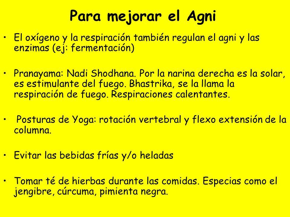 Para mejorar el Agni El oxígeno y la respiración también regulan el agni y las enzimas (ej: fermentación) Pranayama: Nadi Shodhana. Por la narina dere