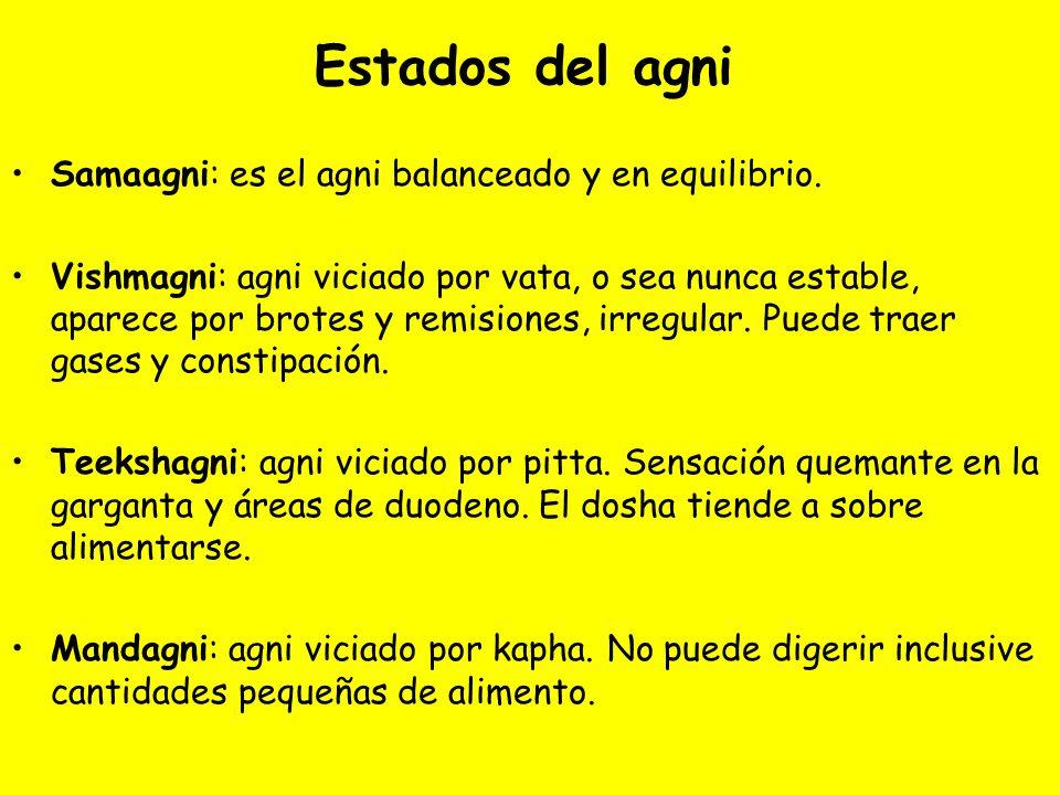 Estados del agni Samaagni: es el agni balanceado y en equilibrio. Vishmagni: agni viciado por vata, o sea nunca estable, aparece por brotes y remision