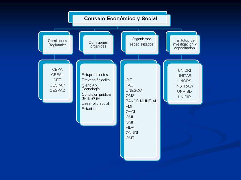 Consejo Económico y Social Comisiones Regionales CEPA CEPAL CEE CESPAP CESPAC Comisiones orgánicas Estupefacientes Prevención delito Ciencia y Tecnolo
