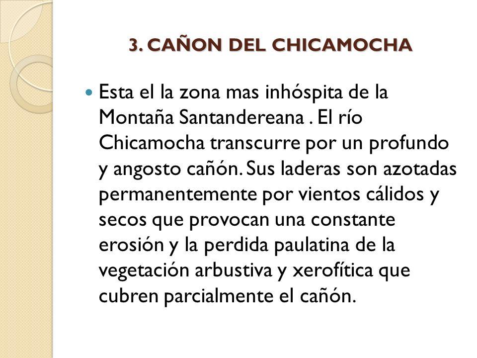 3. CAÑON DEL CHICAMOCHA Esta el la zona mas inhóspita de la Montaña Santandereana. El río Chicamocha transcurre por un profundo y angosto cañón. Sus l