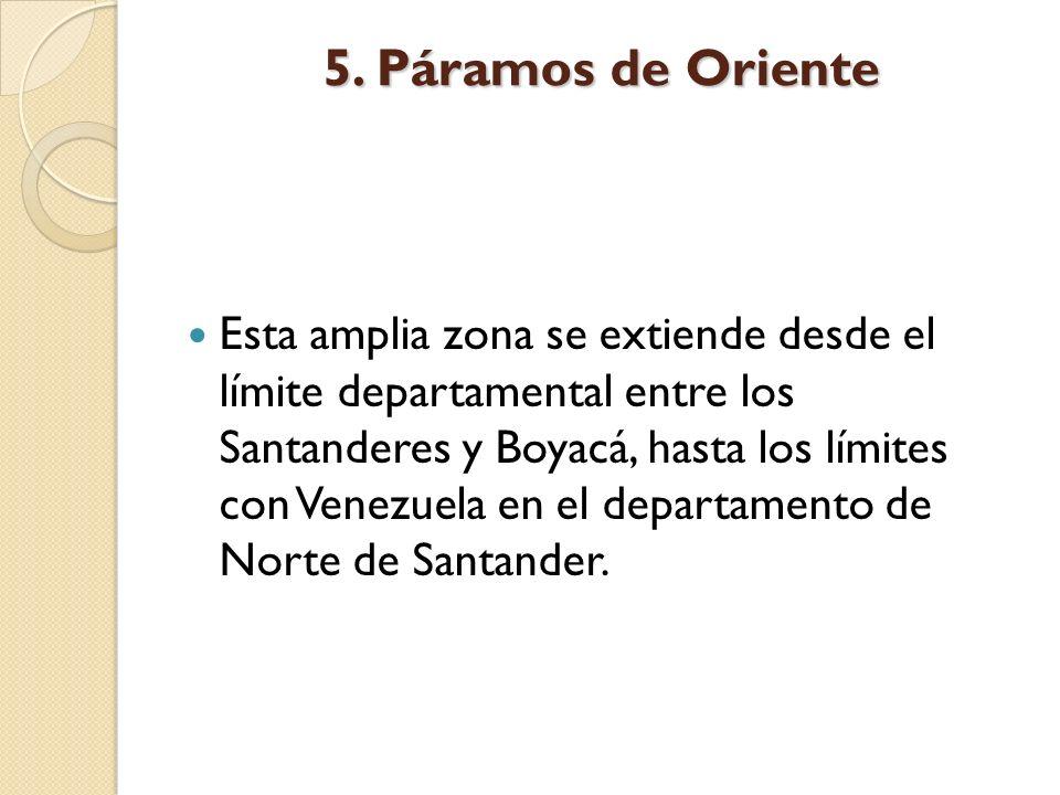 5. Páramos de Oriente Esta amplia zona se extiende desde el límite departamental entre los Santanderes y Boyacá, hasta los límites con Venezuela en el