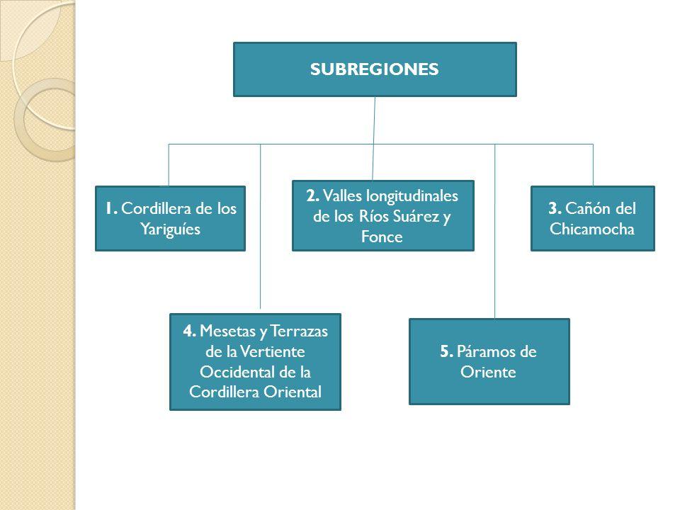 INVESTIGACIONES ARQUEOLOGICAS Jairo Calle Orozco y Luis Raúl Rodríguez en 1962, practican un reconocimiento arqueológico y excavaciones limitadas en inmediaciones del municipio nortesantandereano de Mutiscua.