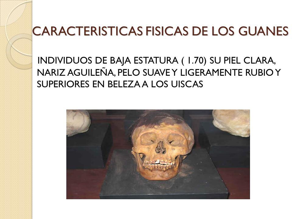 CARACTERISTICAS FISICAS DE LOS GUANES INDIVIDUOS DE BAJA ESTATURA ( 1.70) SU PIEL CLARA, NARIZ AGUILEÑA, PELO SUAVE Y LIGERAMENTE RUBIO Y SUPERIORES E