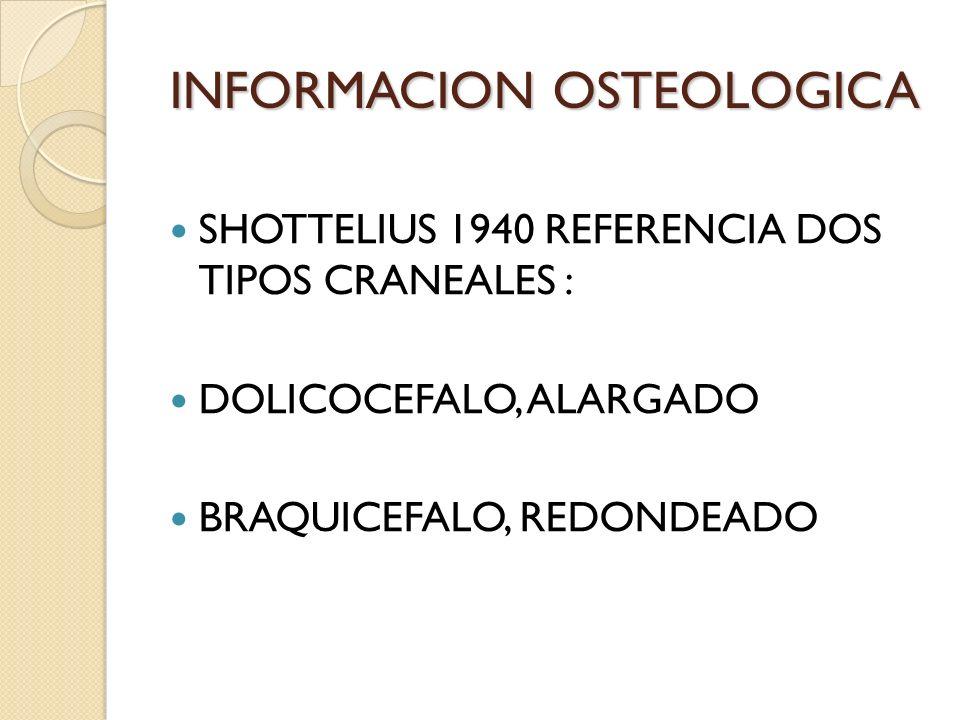 INFORMACION OSTEOLOGICA SHOTTELIUS 1940 REFERENCIA DOS TIPOS CRANEALES : DOLICOCEFALO, ALARGADO BRAQUICEFALO, REDONDEADO